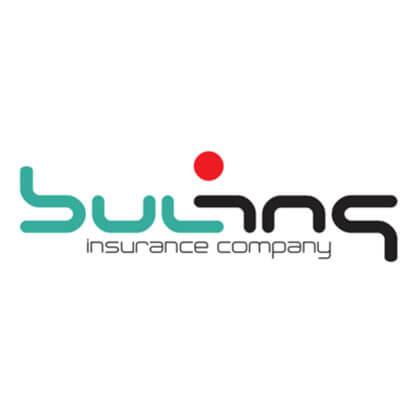 BulIns-Logo